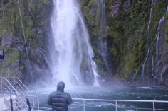 Get up close and personal with nature as the boat slowly takes you to the edge of the waterfalls and cliff faces. Stuff To Do, Things To Do, Queenstown New Zealand, Milford Sound, South Island, Stirling, Spa Day, Cliff, Waterfalls