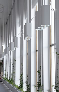 Alvar Aalto Modernist Finlandia Hall Photos   Architectural Digest