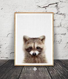 Impresión de mapache, bosque vivero Decor, imprimible Digital instantánea de descarga, sala de niños, Moderno minimalista contemporáneo, animales foto impresiones