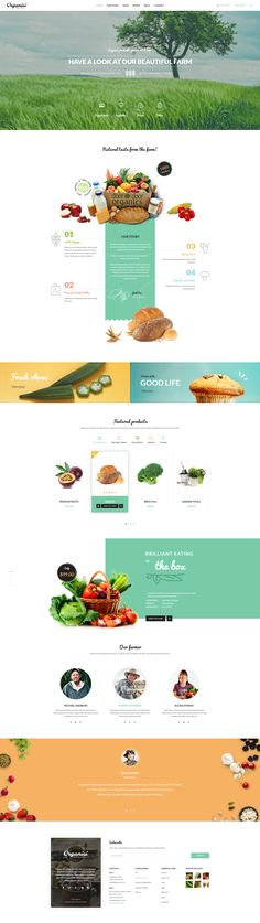 Organici is the premium PSD template for Organic Food Shop. Built especially for any kind of organic store: Food, Farm, Cafe - web design - landing page food website - homepage food website Food Design, Ux Design, Layout Design, Homepage Design, Layout Web, Website Layout, Website Design Inspiration, Design Websites, Maquette Site Web