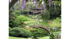 (Photograph: Courtesy the Huntington Library) Huntington Library Botanical Gardens. We see the Japanese gardens through the veil of Wisteria blossoms. Landscaping With Rocks, Front Yard Landscaping, Landscaping Ideas, Wallpaper Canada, Circular Lawn, Huntington Library, Japanese Garden Design, Japanese Gardens, Japanese House