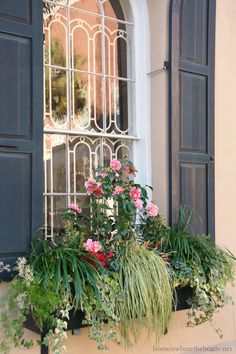 Window box Charleston, SC | Home is Where the Boat Is