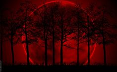 Blood Moon Passover 2014 | What will occur in the 2013–2015 time period?