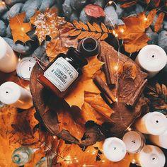 Сейчас самая красивая часть осени - листва вся пожелтела и окрасилась, но еще не опала.Набираемся красок и вдохновения. Зима близко.❄️ _________________ В кадре #гирляндаНить_mr_edison Фото @karina_ili