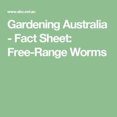 Gardening Australia  Fact Sheet Tree Dahlia Propagation