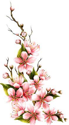 Art Floral, Floral Prints, Big Flowers, Beautiful Flowers, Draw Flowers, Flower Frame, Flower Art, Watercolor Flowers, Watercolor Paintings