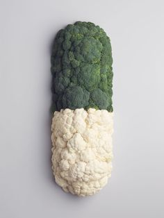 Mini Title — News — Carl Kleiner for Dr Mat Rachel Thomas, Jack Davison, Creative Review, Artist Profile, Still Life Photography, Food Photography, Image Makers, New Artists, Studio