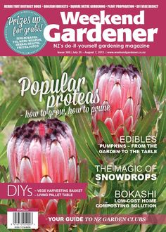 Are Proteas popular in your garden? Issue 368 gives advice on how to grow and prune Proteas; we look at the magic of Snowdrops, and offer low-cost home composting solutions.