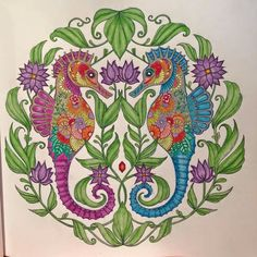 Colouring...seahorses