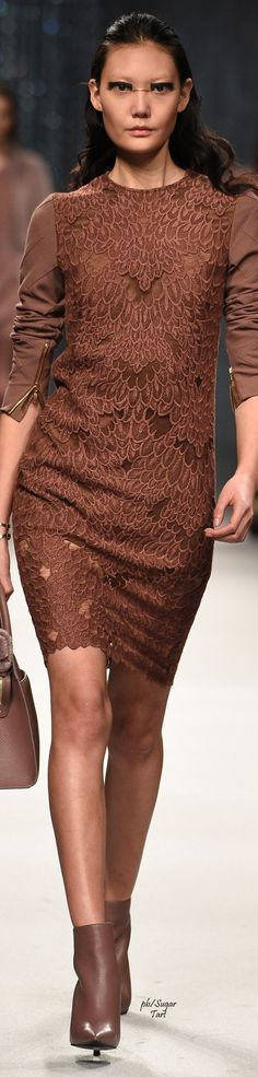 Aigner Fall 2016