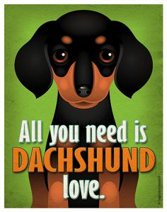 Dachshund Art Print  All You Need is Dachshund by DogsIncorporated, $29.00