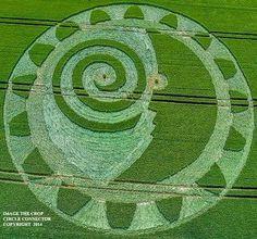 Crop circle - Wiltshire, Reino Unido - Relatado em 8 de julho 2014