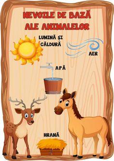 Wild Animals, Quilling, Flora, Activities, Education, Fictional Characters, Art, Hip Bones, Bedspreads