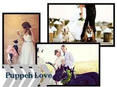 Puppy Ring Bearers and Flower Girls