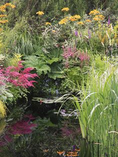 If you have a patch of damp soil in your garden then why not exploit it by creating a bog garden?