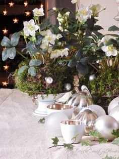 christmas flowers - white and green - MY FRENCH COUNTRY HOME