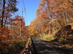 Koiwai - Amihari Bike Ride -bybutakun