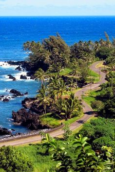The Road to Hana, Maui, Hawaii  I NEVER get car sick, but this one did me in. I would still go back in a heart beat.