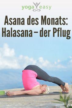 Alles über die Yoga-Übung Halasana – der Pflug. Tipps & alles Wichtige