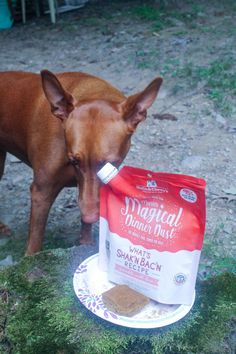 Thinking about trying out Stella and Chewy's Marie's Magical Dinner Dust but not sure if it's worth buying? Check out our full review! Beef Kidney, Beef Liver, Goose Recipes, Dog Safety, Best Dog Food, Dog Signs, Food N, Cool Things To Buy, Stuff To Buy