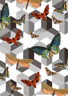 TJ print design no. 2/ Dec 2011