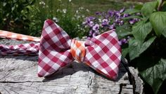 Orange and Maroon Reversible Gingham Bow Tie for all of you Tech Fans