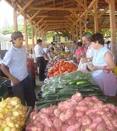 Ciudad Colón farmers market