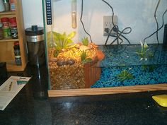 I could sooo help you do this to that big tank you have. It would be simple! And no more floating dock!