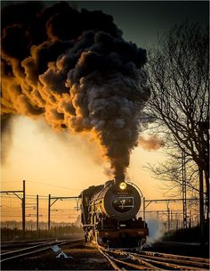 Steam train, train, locomotive, smoke, steam, on rails, transportation, railway, tracks, sunbeams, tree, golden, sunset, photograph, photo