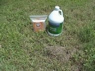 How to get rid of Fire Ants: Generously sprinkle the mound with baking soda. If large, poke holes in the mound and fill em with baking soda. After the mound has been treated with sodium bicarbonate, youre ready to add vinegar. Pour a generous amount of vinegar on the mound, a small mound (like the one illustrated) takes about a quart, larger ones up to a half a gallon.