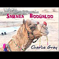 Single by Charlie Gray