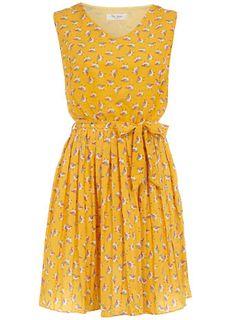Robin Pleat Dress