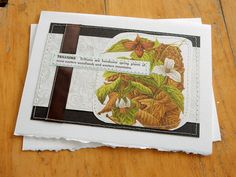 Trilliums  handmade sewn card by bluestemhandmade on Etsy, $5.00