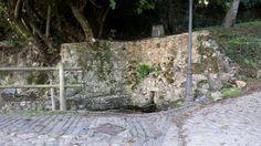 Paisaje ruta del estrecho de Covas Paths, Scenery, Fotografia