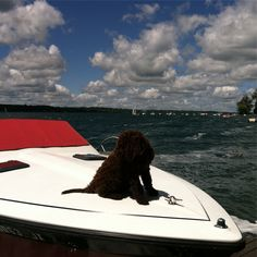 Boat Insurance, Insurance Agency, Personal Insurance, Take A Break, Airplane View, Things To Come, Boating, Business, People