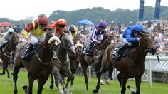 Syphax set for Newcastle  https://www.racingvalue.com/syphax-set-for-newcastle/