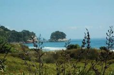 New Zealand holiday homes, baches and vacation homes for rent. Summer Catch, Vacation Homes For Rent, New Zealand Holidays, Seaside Village, Next Holiday, Renting A House, Paradise, Coast, Relax