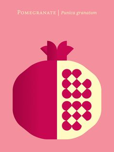 Pomegranate / 12 Fruit And Vegetable Posters For Foodies (via BuzzFeed)