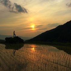 Asuka, Nara, Japan(Terrace paddy field) 明日香村の棚田 : 奈良県 高市郡 明日香村 細川あたり