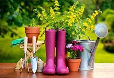 Gardening Tools, Planters & Yard Decor Let your green thumb shine with this must-have mix of gardening tools and accessories. Display home-grown blooms in charming planters, tend to peonies and posies with essential tools and watering cans, and create a beautiful backyard retreat with elegant trellises, chic candle lanterns, sparkling string lights, and more. #teeleiturner #gardening #jossandmain #teeleiturenrshoppingnetwork  www.teeleiturner.com