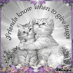 """A very warm welcome to our """"Sisters in Christ"""" group! Thank you so much for joining us! Have a beautiful day! Much love and gentle hugs. Genuine Friendship, Friend Friendship, Friendship Quotes, Friendship Images, Gifs, Friends Forever, Best Friends, Special Friends, Hug Pictures"""