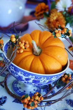 Mini pumpkin and berries in blue and white ~ nice color combination!