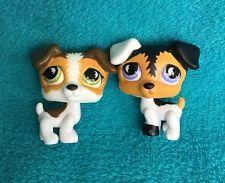 Lot of 2 Littlest Pet Shop LPS JACK RUSSELL TERRIER DOGS #803 #804 moon eyes