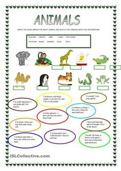 There are 2 activities 1- write the name under the right animal and match them with the descriptions. - ESL worksheets