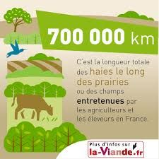 """Alexandre Carré su Twitter: """"700 000 km de #haies entretenues ! Merci les Agris ! #prairie #environnement #biodiversité #AgricultureduFutur http://t.co/PfS18MaSt1"""""""