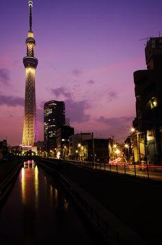 Japan-im deadly wanna go there! Tokyo Skytree, Shinjuku Gyoen, Tsukiji, Beautiful Sunset, Beautiful Places, Places To Travel, Places To Visit, Japan Landscape, Tokyo Night