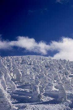 The Snow Monsters of Zao, Yamagata, Japan
