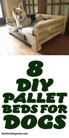 8 DIY Pallet Beds For Dogs! @jjking321