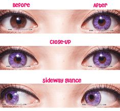 G&G Violet - Circle Lenses & Colored Contacts Eyebrow Makeup Tips, Eye Makeup, Witch Hazel For Skin, Cosplay Contacts, Coloured Contact Lenses, Feed In Braid, Judy Hopps, Circle Lenses, Cleansing Mask