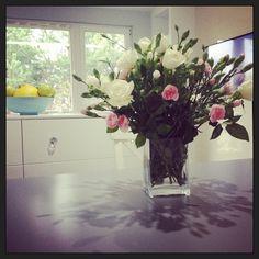 dariapogo's photo on Instagram dariapogo 11 mies. temu Flowers <3